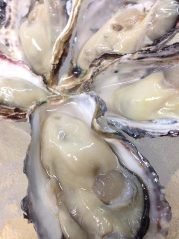 兵庫県相生産生牡蠣