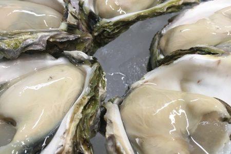 長崎の牡蠣