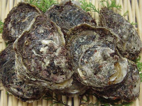 岩牡蠣と小肌が入荷