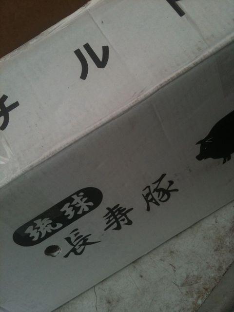 琉球長寿豚 到着しました