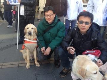 盲導犬育成募金のお礼