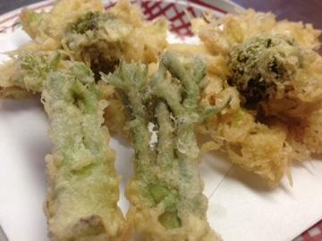 たらの芽 ふきのとうの天ぷら