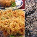 桜海老と桜の花