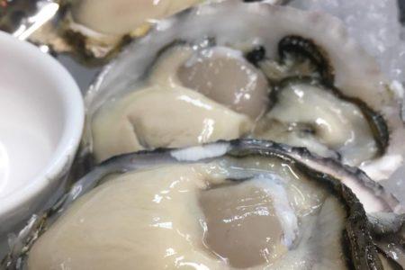 赤穂の牡蠣
