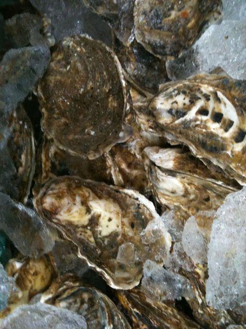 厚岸の牡蠣 入荷